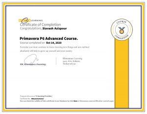 Siavash Azizpour Certification